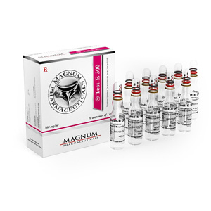 Acquista Testosterone enantato: Magnum Test-E 300 Prezzo